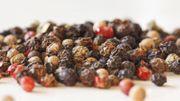 Le poivre : ses vertus bien-être et santé insoupçonnées