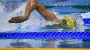 Timmers gagne le 100m libre à Anvers et fait le plein de confiance