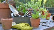 Comment aménager son jardin et sa terrasse en mode zéro déchet?
