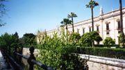 Carrefour des Amériques - #6 : La Habanera de Séville