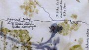 Incursion dans le monde de Sandrine de Borman au jardin botanique de Meise