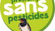 Printemps sans pesticides, des idées pour jardiner au naturel