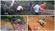 Brésil: dans le Mato Grosso, chronique d'un massacre de paysans annoncé