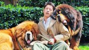 Chine : un chien vendu pour 1,4 million d'euros
