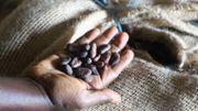 Côte d'Ivoire: au pays du cacao, on ne mange pas de chocolat