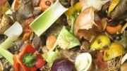 Faites du compost sur votre balcon