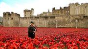 Centenaire de la Première Guerre mondiale - Les coquelicots commémorant la Grande guerre quittent la Tour de Londres
