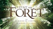 """La forêt tropicale """"comme on ne l'a jamais filmée"""""""
