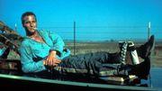 """""""Luke la main froide"""" : Paul Newman, admirable rebelle dans ce classique du cinéma américain"""