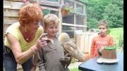 """""""Passion et Rapaces"""": partez à la découverte des oiseaux de proies chez nous"""