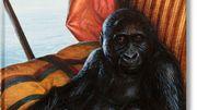 Six expositions parisiennes à découvrir en livres