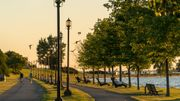 Verdir les villes pour vivre en meilleure santé, plaident 600 médecins canadiens