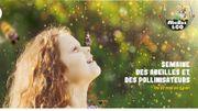 Le Parc Naturel de Gaume participe à la Semaine de l'Abeille.