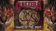 """""""Cattera"""", le groupe de métal dont le chanteur est… un chat!"""