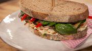 Sandwich de prestige au poulet et légumes grillés