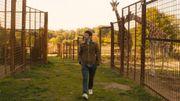 Le semaine cinéma de Cathy Immelen avec Gaspard va au Mariage et Une part d'ombre