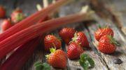 Recette de Candice : Crumble à la rhubarbe et aux fraises