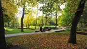 Le Groene Valleipark, à Gand, intègre des éléments de jeux dans la nature. De simples troncs deviennent des modules de jeux.