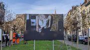 """La Maison des Femmes organise une expo pour """"Rendre visible l'invisible"""""""