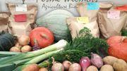 Fexhe-Slins et Boirs : Les pommes de terre ont la patate !