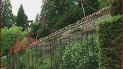 En Ecosse - Portmore Garden