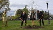 Mais où est passé l'arbre planté par Trump et Macron dans le jardin de la Maison Blanche?