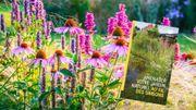 Jardin : un guide de Natagora pour faire germer plein d'idées d'aménagements naturels