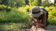 Partez à la découverte de la forêt et toutes les merveilles qu'elle recèle à Bon-Secours