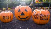 Halloween à Pairi Daiza, c'est reparti !