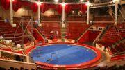 France: décès du clown et comédien Michel Francini, second rôle populaire