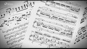 Je Sais Pas Vous: Les études pour piano de Chopin