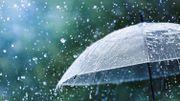 Le Top 5 des activités à faire à Bruxelles quand il pleut