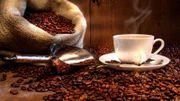 Le café et ses idées reçus...