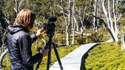 """Les vertus du travail en """"open space"""". Pascale en plein shooting dans la nature apaisante de Tasmanie (Australie)."""