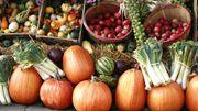 Les vertus des fruits et légumes en automne
