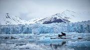 Ludovico Einaudi joue sur la banquise de l'Arctique pour sensibiliser à la fonte des glaces