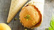 Recette : Sorbet maison abricot, citron, basilic