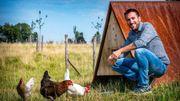"""""""Ma Poule"""" propose un service de location de poules"""