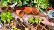 Les tutos du web pour le jardinage