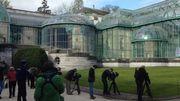 Historique serres royales de Laeken à l'occasion de l'ouverture 2014