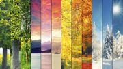Êtes-vous printemps, été, automne ou hiver ?