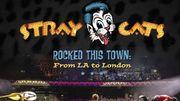 Un album live pour les Stray Cats
