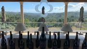Les vignobles de Quinta de Lemos
