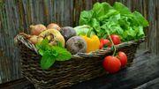 Hesbicoop, une alimentation saine, en circuit court, au cœur de la Hesbaye