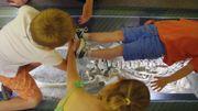 Ricochet: un projet pour accueillir les enfants au musée, récompensé du prix Akcess