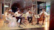 Concert au musée: découvrez les tableaux musicaux à la Maison de l'histoire européenne