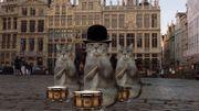 Une vidéo officielle tente de relancer le tourisme à Bruxelles avec des chats