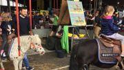 """Jean-Pierre : """"Le manège à poneys permet un contact avec l'animal !"""""""