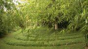 Quelle belle idée pour attirer la faune au jardin !