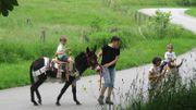 Une activité insolite à Bertrix: découvrir la Cité du Baudet au pas de l'âne